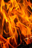 Fire flames background Stock Images