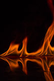 Fire flames on a  background Stock Photos
