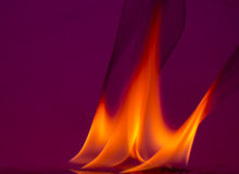 Fire flames on a  background Stock Photo