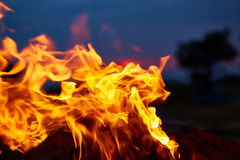 Fire flames background Royalty Free Stock Image