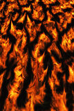 Fire flames background. Stock Photos