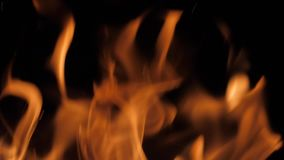 Fire Flames. Beautiful Abstract Backdrop. stock footage