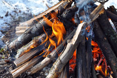 Fire flames. Beautiful fire flames - burning in the wood in the winter Stock Images