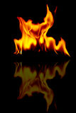 Fire flames. On a black Royalty Free Stock Image