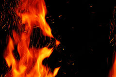 Fire and flames on a black background Stock Image