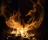 Fire flames on black background.  royalty free stock images