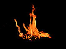 Fire flames on black background Stock Image