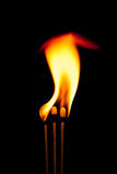 The Fire flames on black background Royalty Free Stock Photos