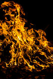 Fire flames on black Stock Photos
