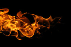 Fire flames on black background. The Fire flames on black background Royalty Free Stock Image