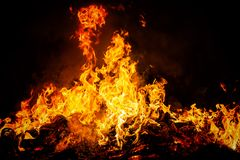 Fire flames on black background. Big fire flames on black background, close up Royalty Free Stock Images
