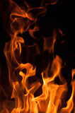 Fire flames on a black background. Blaze fire flame texture background. Close up of fire flames  on black background. Burn. Abstract fire flames background Royalty Free Stock Images