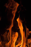Fire flames on a black background. Blaze fire flame texture background. Close up of fire flames  on black background. Burn. Abstract fire flames background Royalty Free Stock Image