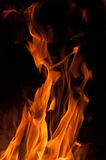 Fire flames on a black background. Blaze fire flame texture background Stock Image