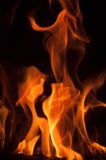 Fire flames on a black background. Blaze fire flame texture background. Close up of fire flames isolated on black background. Burn Stock Photos