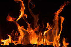 Fire flames on a black background. Blaze fire flame texture background. Close up of fire flames isolated on black background. Burn Royalty Free Stock Photo