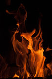 Fire flames on a black background. Blaze fire flame texture background. Close up of fire flames isolated on black background. Burn. Abstract fire flames Royalty Free Stock Photos