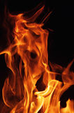 Fire flames on a black background. Blaze fire flame texture background. Close up of fire flames isolated on black background. Burn Stock Photos