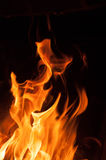 Fire flames on a black background. Blaze fire flame texture background. Close up of fire flames isolated on black background. Burn Royalty Free Stock Image