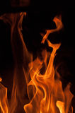 Fire flames on a black background. Blaze fire flame texture background. Close up of fire flames isolated on black background. Burn Royalty Free Stock Photos
