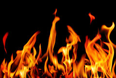 Fire flames on a black background Stock Images