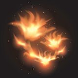 Fire flames. Fire flames on a black background. Colorful vector illustration Stock Image