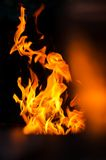 Fire flames on a black background. Hot fires flame Royalty Free Stock Images