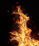 Fire flames on black background Stock Images