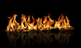 Fire flames on black background Stock Photography
