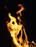 Fire flames on black background or texture Royalty Free Stock Photo