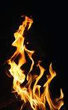 Fire flames on black background or texture Royalty Free Stock Photography