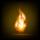 Fire flames on a black background Stock Image