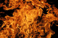 Fire. Flames with a black dark background royalty free stock image