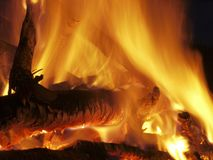 Fire flames of a bonfire on black background Royalty Free Stock Images
