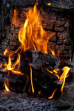 Fire flames. Stock Images