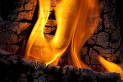 Fire flames. Stock Photography