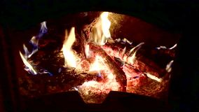Fire with flames burning. From olive tree logs in a chimney closeup stock video