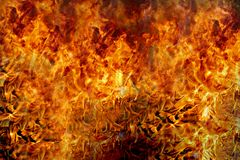 Fire flames burning royalty free stock photos