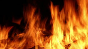 Fire Flames stock video footage