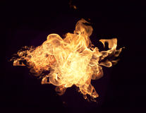 Fire flames Royalty Free Stock Photography