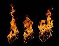 Fire flames collection Stock Photography