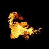 Fire flames collection isolated on black background.  Stock Image