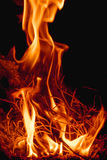 Fire flames at dark night Stock Photography