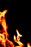Fire flames at dark night Royalty Free Stock Images
