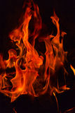 Fire flames. Royalty Free Stock Image