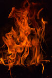 Fire flames. Stock Image