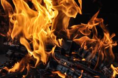 Fire and burning log. Fire flames with logs and dark background stock photography