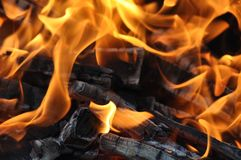 Fire and burning log. Fire flames with logs and dark background royalty free stock photos