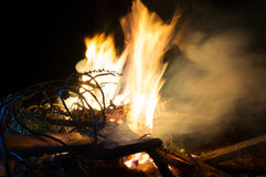 Fire flames and pine tree brunch burning Royalty Free Stock Photography