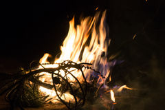 Fire flames and pine tree brunch burning Royalty Free Stock Photos
